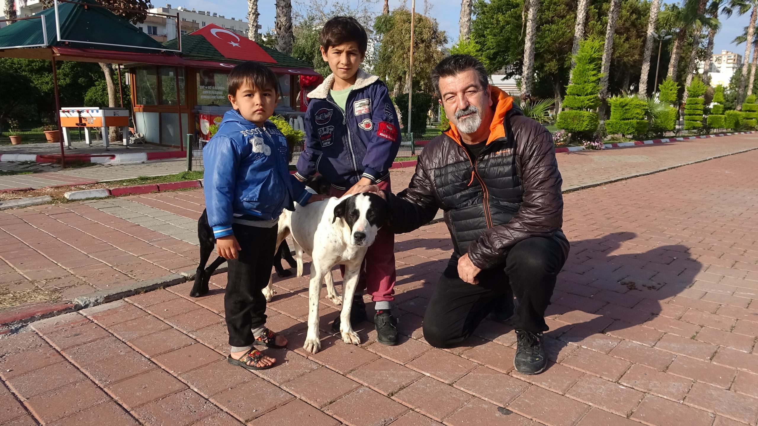 Zor günler yaşayan sokak köpeklerine mama desteği