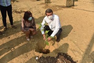 """Başkan Kılınç: """"Belediye arazilerinde tropikal meyve üretimi yapacağız"""""""