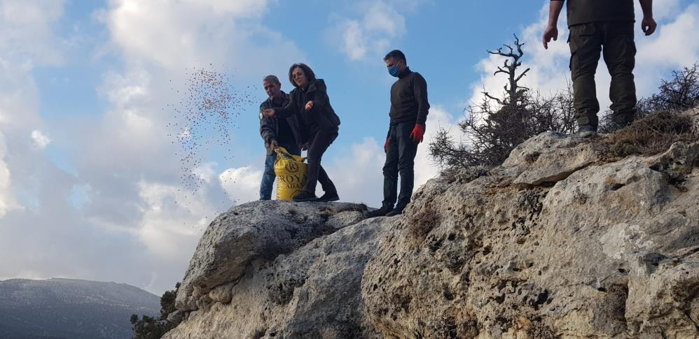 Mersin'de yaban hayvanları unutulmadı